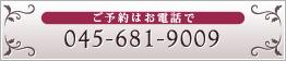 045-681-9009